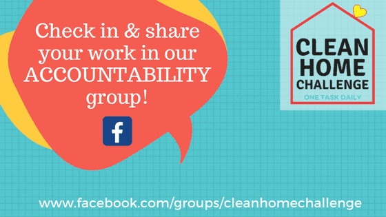 FB Accountability Group - Clean Home Challenge