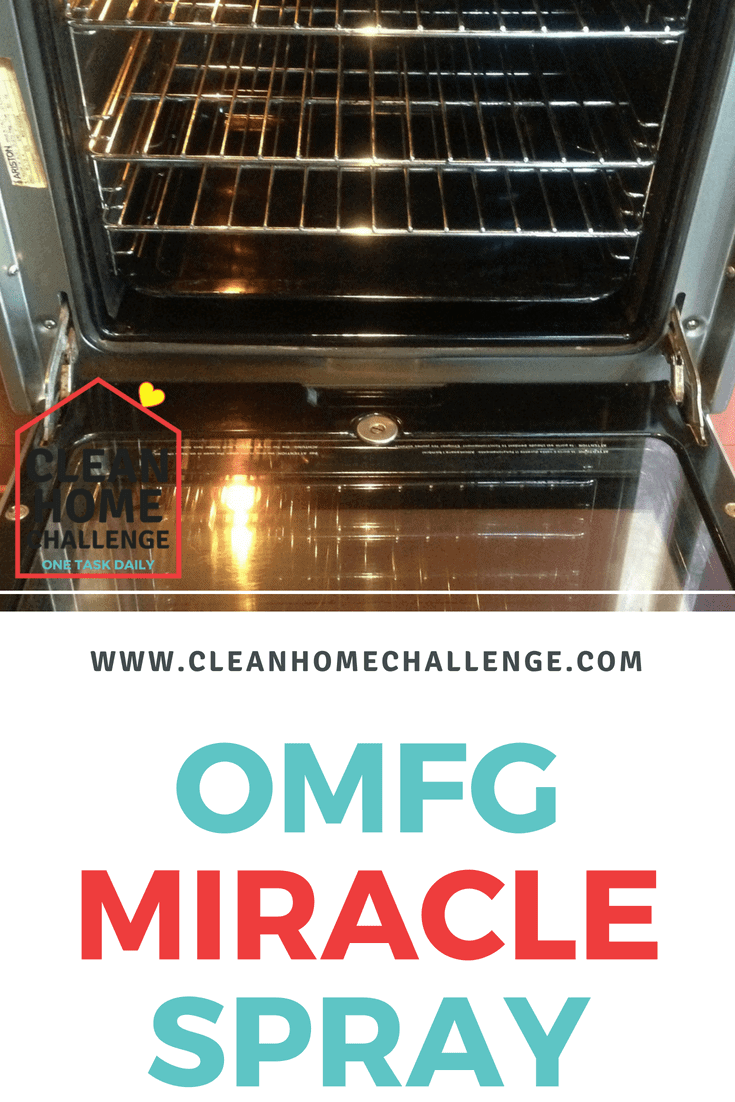 Omfg Miracle Spray Clean Home Challenge