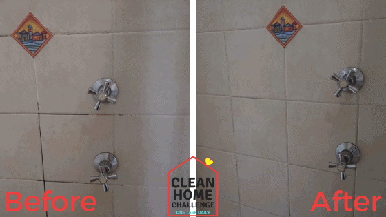 Shower Grout Before & After