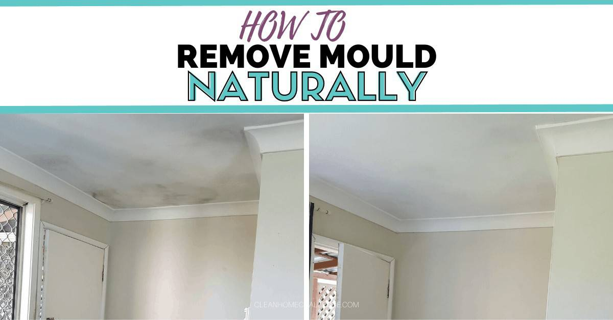 How To Remove Mould Naturally