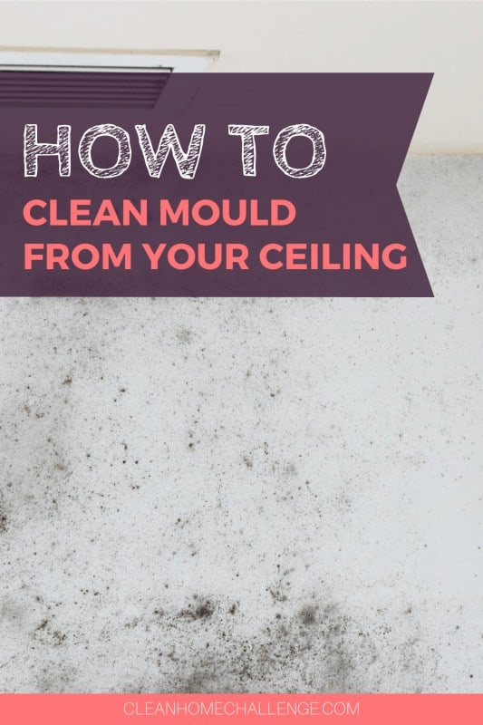 How To Remove Mould From Your Ceiling